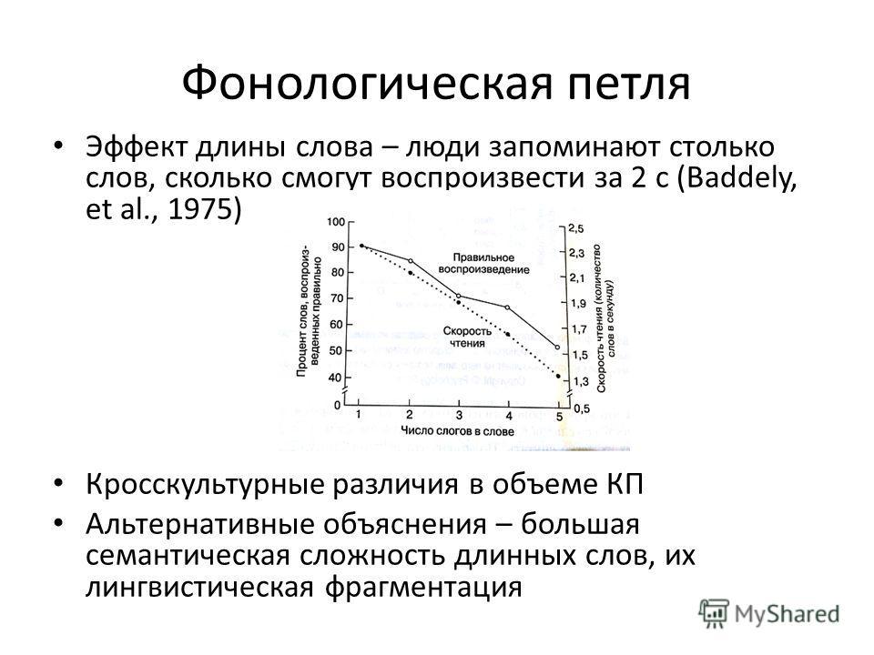 Фонологическая петля Эффект длины слова – люди запоминают столько слов, сколько смогут воспроизвести за 2 с (Baddely, et al., 1975) Кросскультурные различия в объеме КП Альтернативные объяснения – большая семантическая сложность длинных слов, их линг