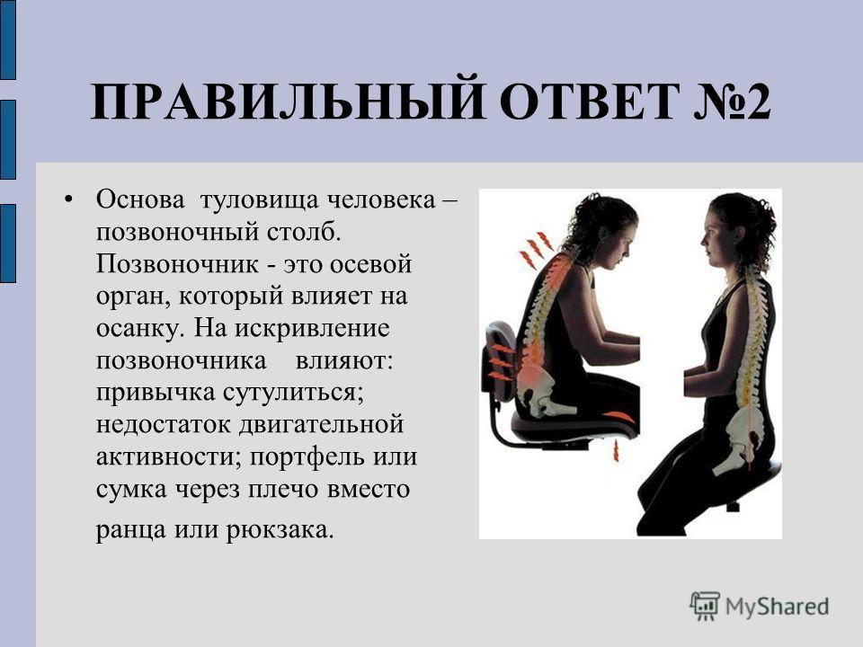 ПРАВИЛЬНЫЙ ОТВЕТ 2 Основа туловища человека – позвоночный столб. Позвоночник - это осевой орган, который влияет на осанку. На искривление позвоночника влияют: привычка сутулиться; недостаток двигательной активности; портфель или сумка через плечо вме