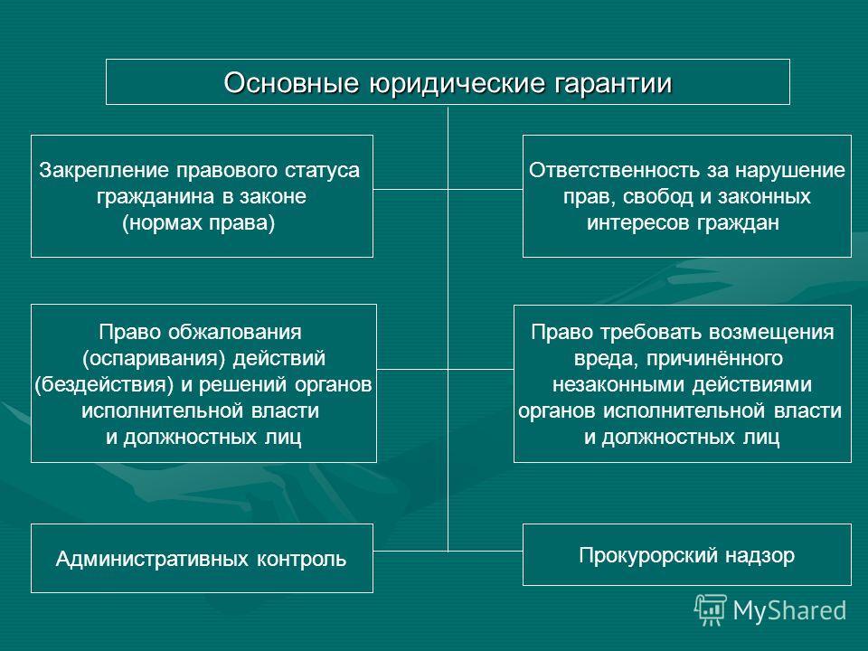 Виды гарантий Политические Организационные Экономические Юридические Виды юридических гарантий Судебные Внесудебные