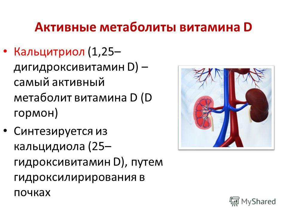 Активные метаболиты витамина D Кальцитриол (1,25– дигидроксивитамин D) – самый активный метаболит витамина D (D гормон) Синтезируется из кальцидиола (25– гидроксивитамин D), путем гидроксилирирования в почках