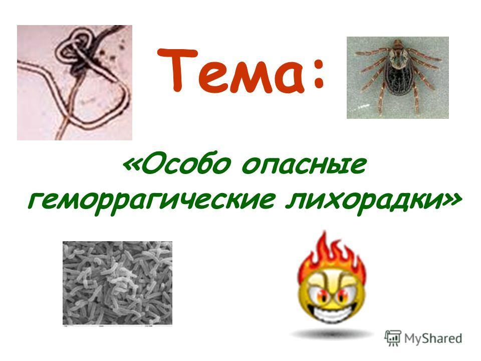 Тема: «Особо опасные геморрагические лихорадки»