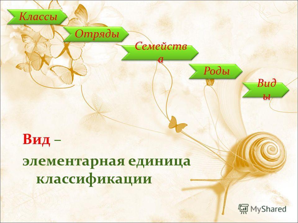Классы Отряды Семейств а Роды Вид ы Вид – элементарная единица классификации