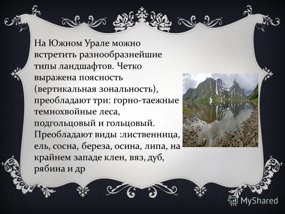 На Южном Урале можно встретить разнообразнейшие типы ландшафтов. Четко выражена поясность ( вертикальная зональность ), преобладают три : горно - таежные темнохвойные леса, подгольцовый и гольцовый. Преобладают виды : лиственница, ель, сосна, береза,