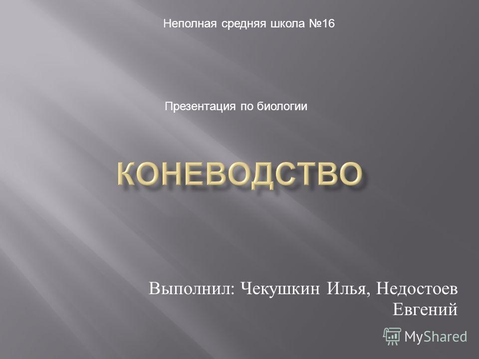 Выполнил : Чекушкин Илья, Недостоев Евгений Неполная средняя школа 16 Презентация по биологии