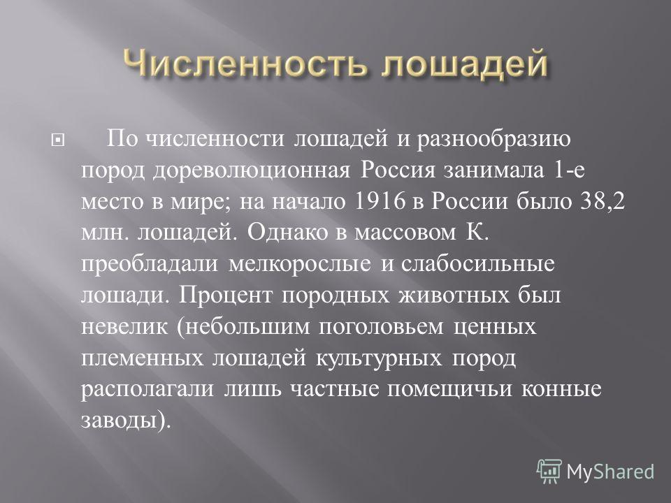 По численности лошадей и разнообразию пород дореволюционная Россия занимала 1- е место в мире ; на начало 1916 в России было 38,2 млн. лошадей. Однако в массовом К. преобладали мелкорослые и слабосильные лошади. Процент породных животных был невелик
