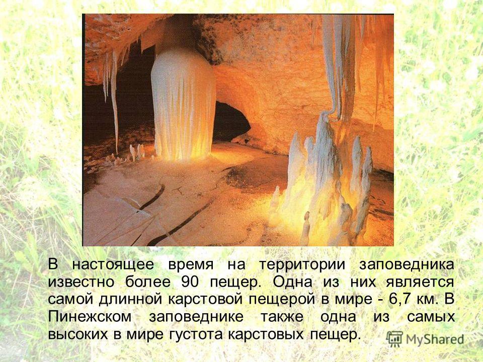 В настоящее время на территории заповедника известно более 90 пещер. Одна из них является самой длинной карстовой пещерой в мире - 6,7 км. В Пинежском заповеднике также одна из самых высоких в мире густота карстовых пещер.