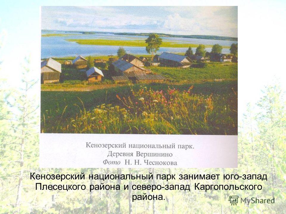 Кенозерский национальный парк занимает юго-запад Плесецкого района и северо-запад Каргопольского района.