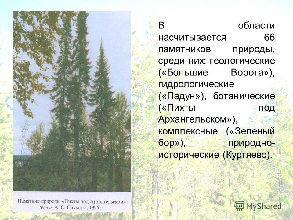 В области насчитывается 66 памятников природы, среди них: геологические («Большие Ворота»), гидрологические («Падун»), ботанические («Пихты под Архангельском»), комплексные («Зеленый бор»), природно- исторические (Куртяево).