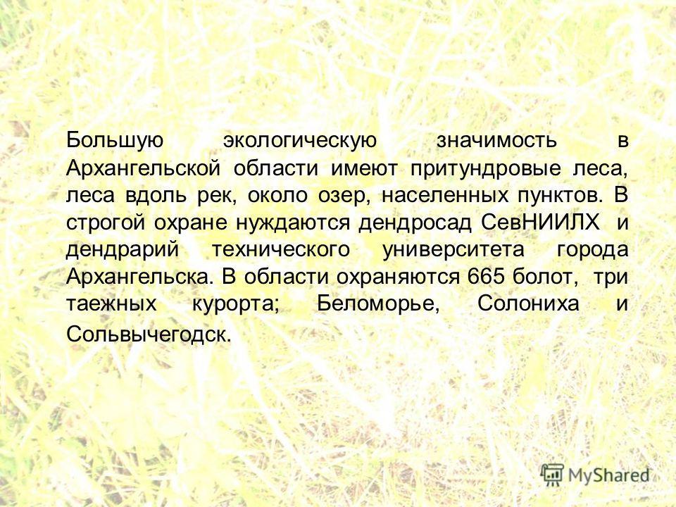 Большую экологическую значимость в Архангельской области имеют притундровые леса, леса вдоль рек, около озер, населенных пунктов. В строгой охране нуждаются дендросад СевНИИЛХ и дендрарий технического университета города Архангельска. В области охран