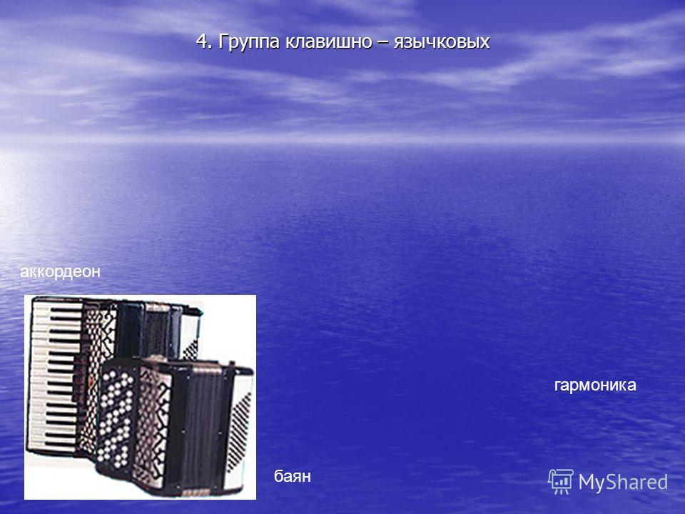 4. Группа клавишно – язычковых баян аккордеон гармоника