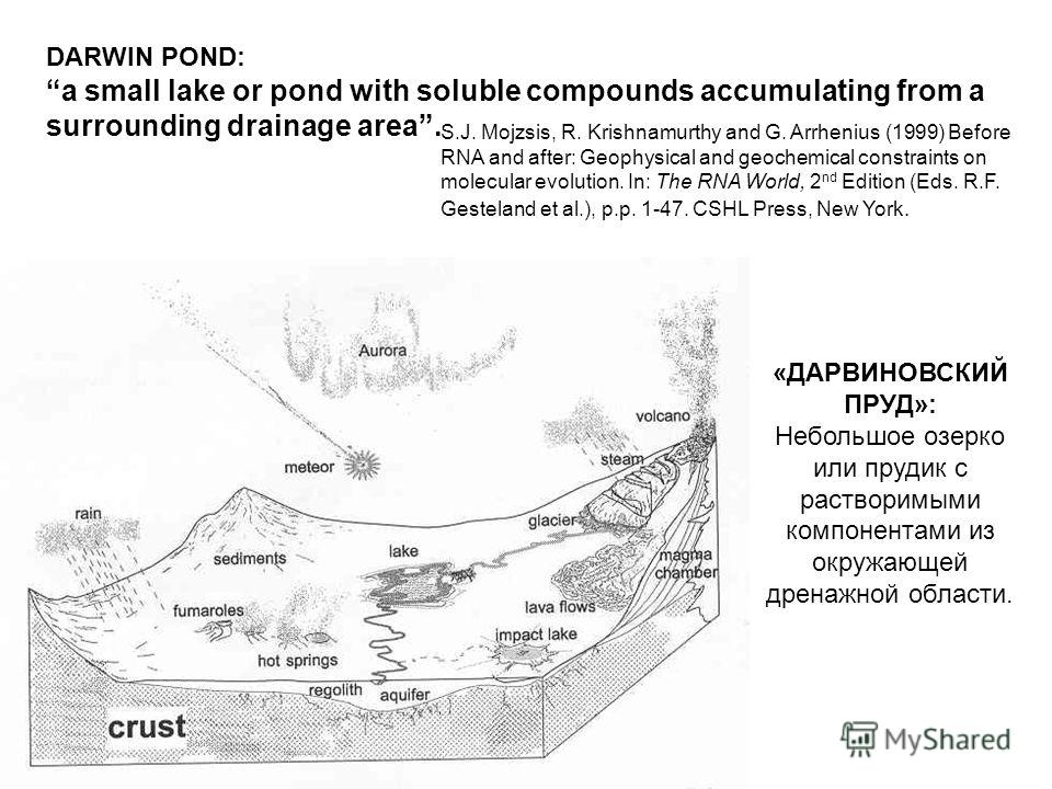 DARWIN POND: a small lake or pond with soluble compounds accumulating from a surrounding drainage area. S.J. Mojzsis, R. Krishnamurthy and G. Arrhenius (1999) Before RNA and after: Geophysical and geochemical constraints on molecular evolution. In: T