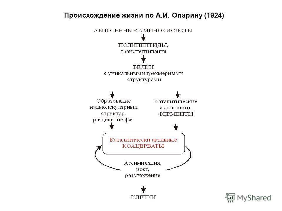 Происхождение жизни по А.И. Опарину (1924)