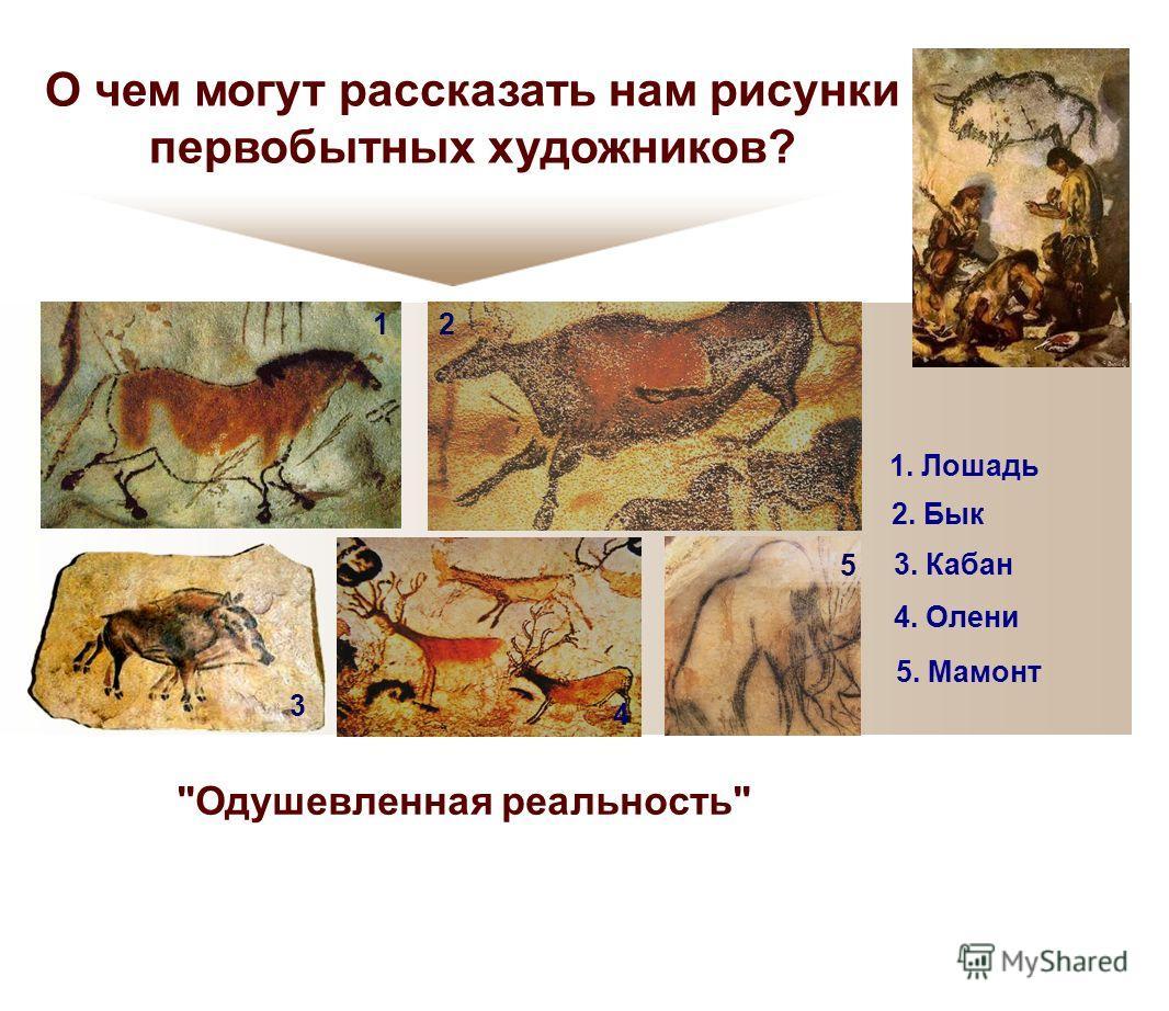 О чем могут рассказать нам рисунки первобытных художников? 12 3 4 5 1. Лошадь 2. Бык 3. Кабан 4. Олени 5. Мамонт Одушевленная реальность