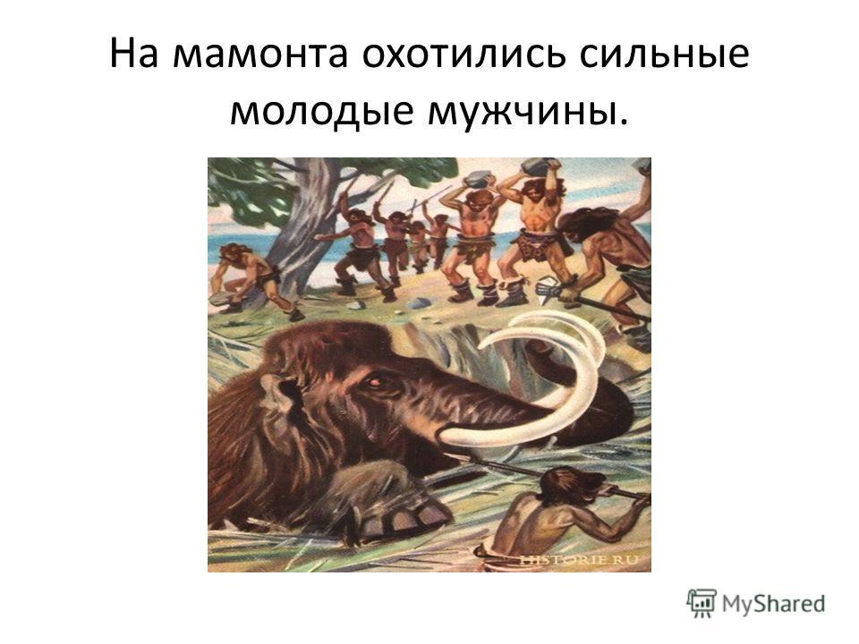 На мамонта охотились сильные молодые мужчины.
