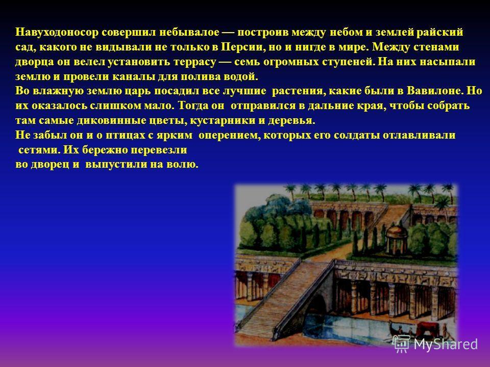 Навуходоносор совершил небывалое построив между небом и землей райский сад, какого не видывали не только в Персии, но и нигде в мире. Между стенами дворца он велел установить террасу семь огромных ступеней. На них насыпали землю и провели каналы для