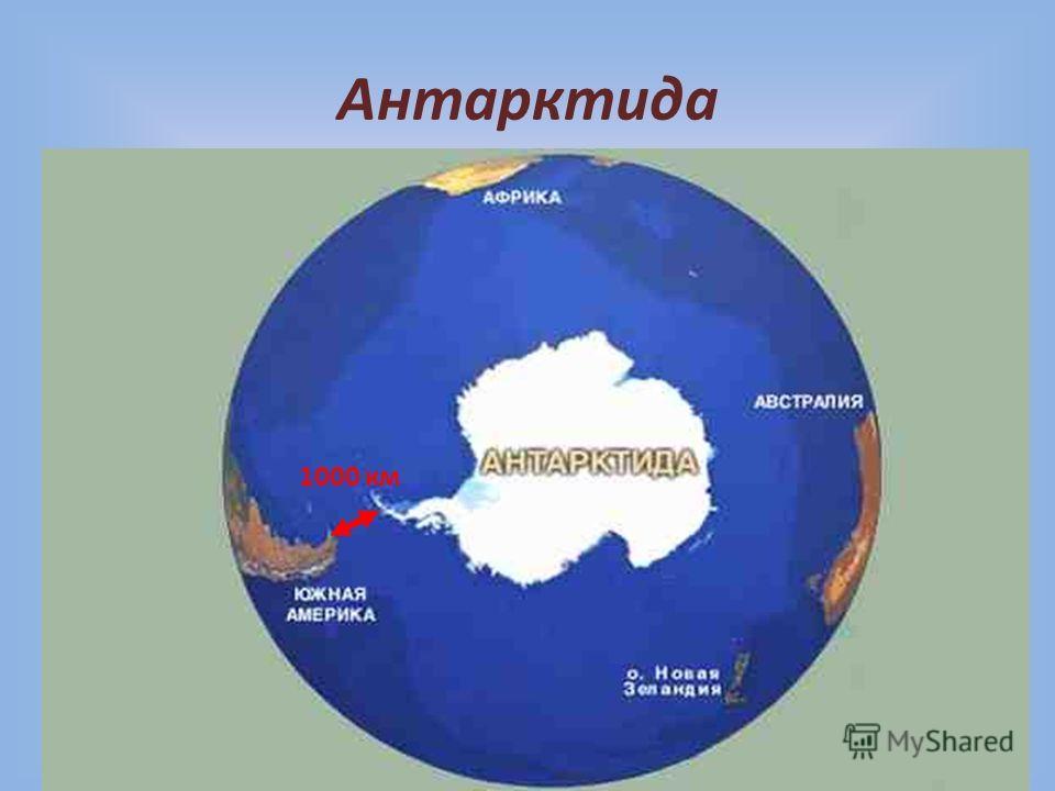 Антарктида 1000 км