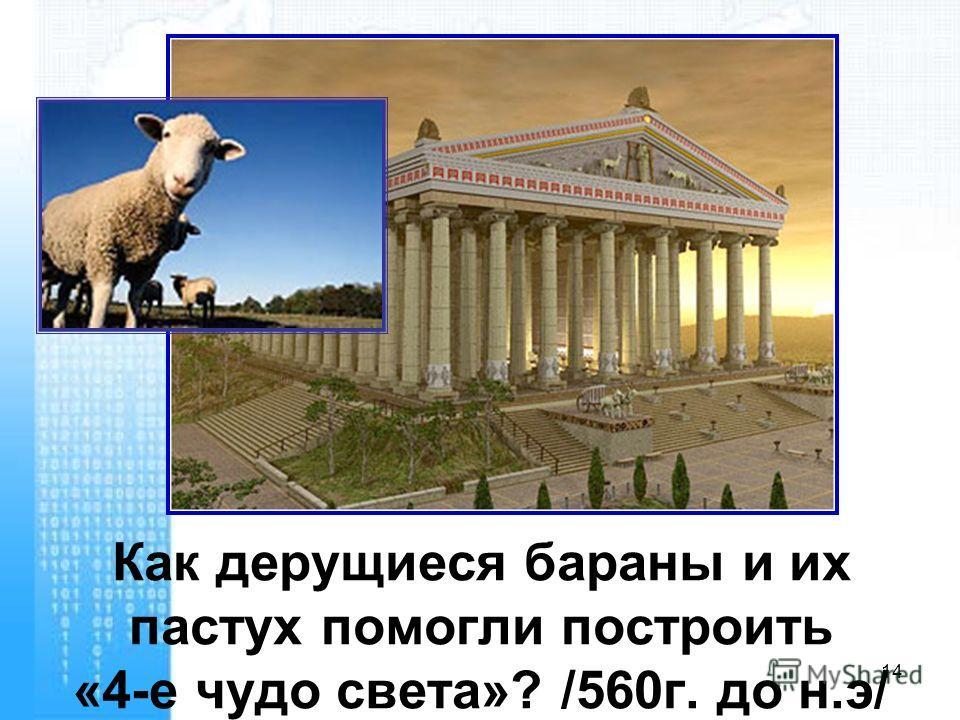 Как дерущиеся бараны и их пастух помогли построить «4-е чудо света»? /560 г. до н.э/ 14