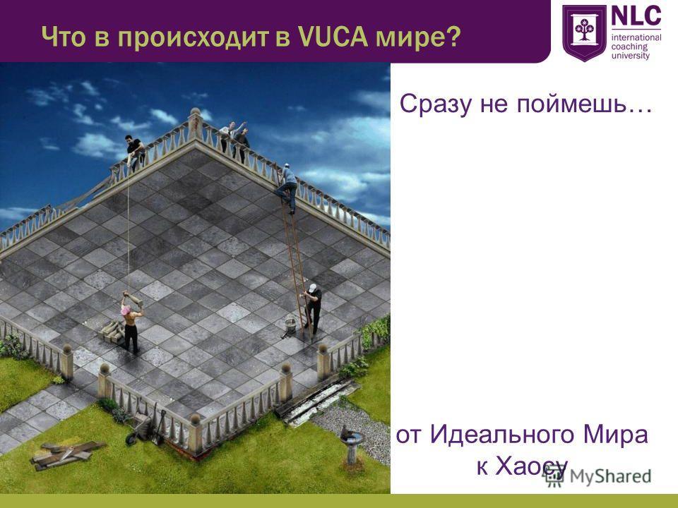 Что в происходит в VUCA мире? Сразу не поймешь… от Идеального Мира к Хаосу