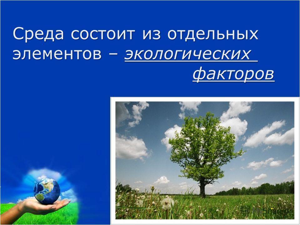Среда состоит из отдельных элементов – экологических факторов