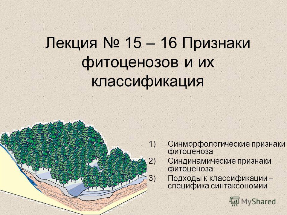 Лекция 15 – 16 Признаки фитоценозов и их классификация 1)Синморфологические признаки фитоценоза 2)Синдинамические признаки фитоценоза 3)Подходы к классификации – специфика синтаксономии