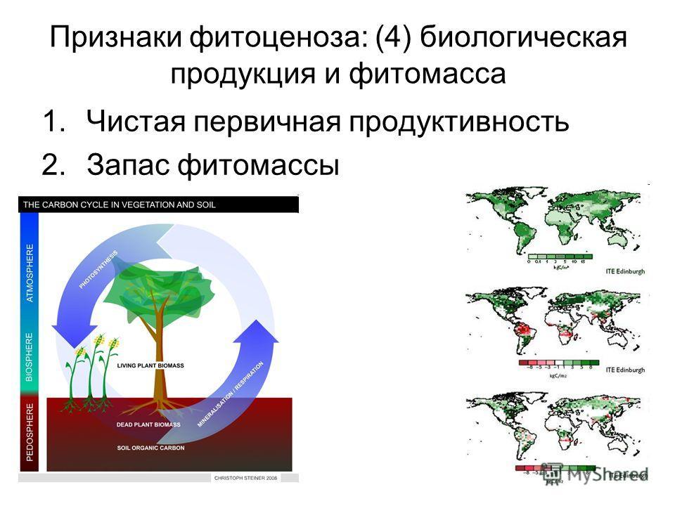 Признаки фитоценоза: (4) биологическая продукция и фитомасса 1. Чистая первичная продуктивность 2. Запас фитомассы