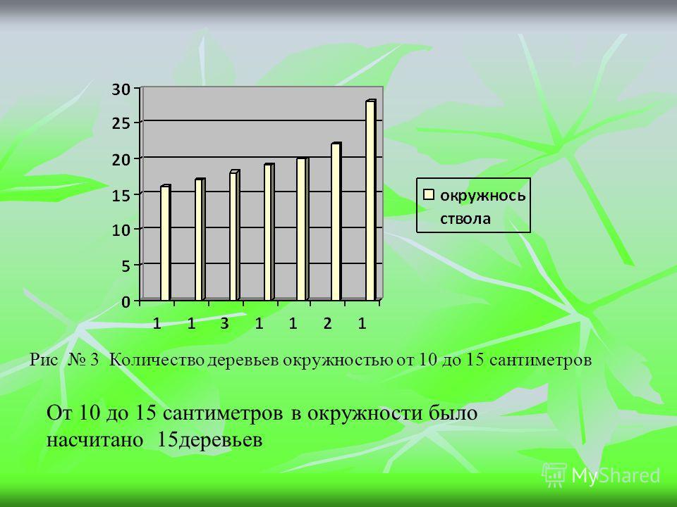 Рис 3 Количество деревьев окружностью от 10 до 15 сантиметров От 10 до 15 сантиметров в окружности было насчитано 15 деревьев