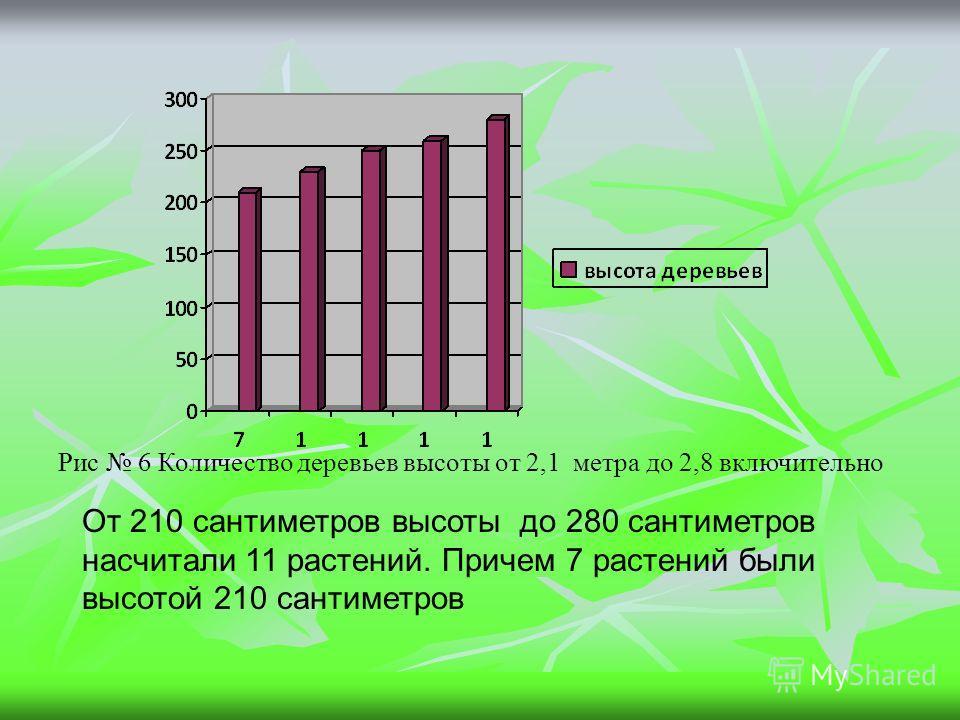 Рис 6 Количество деревьев высоты от 2,1 метра до 2,8 включительно От 210 сантиметров высоты до 280 сантиметров насчитали 11 растений. Причем 7 растений были высотой 210 сантиметров