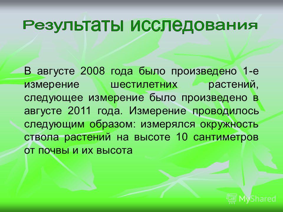 В августе 2008 года было произведено 1-е измерение шестилетних растений, следующее измерение было произведено в августе 2011 года. Измерение проводилось следующим образом: измерялся окружность ствола растений на высоте 10 сантиметров от почвы и их вы