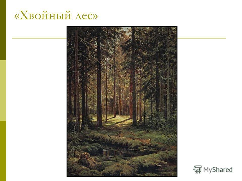 «Хвойный лес»