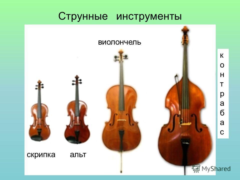 Струнные инструменты скрипкаальт виолончель контрабасконтрабас