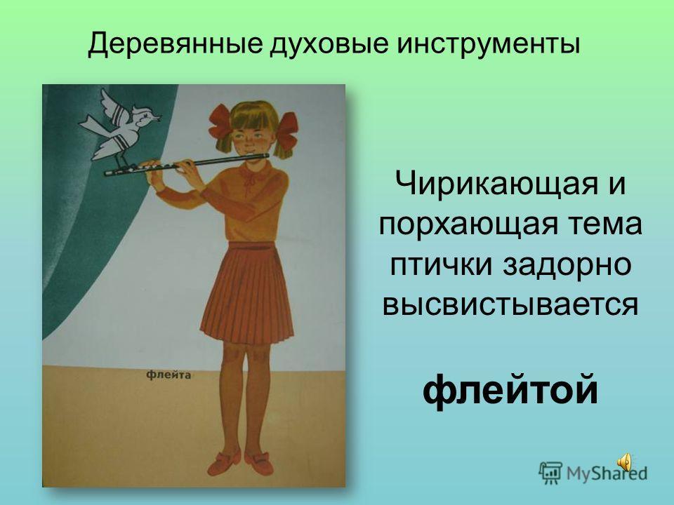Деревянные духовые инструменты Чирикающая и порхающая тема птички задорно высвистывается флейтой