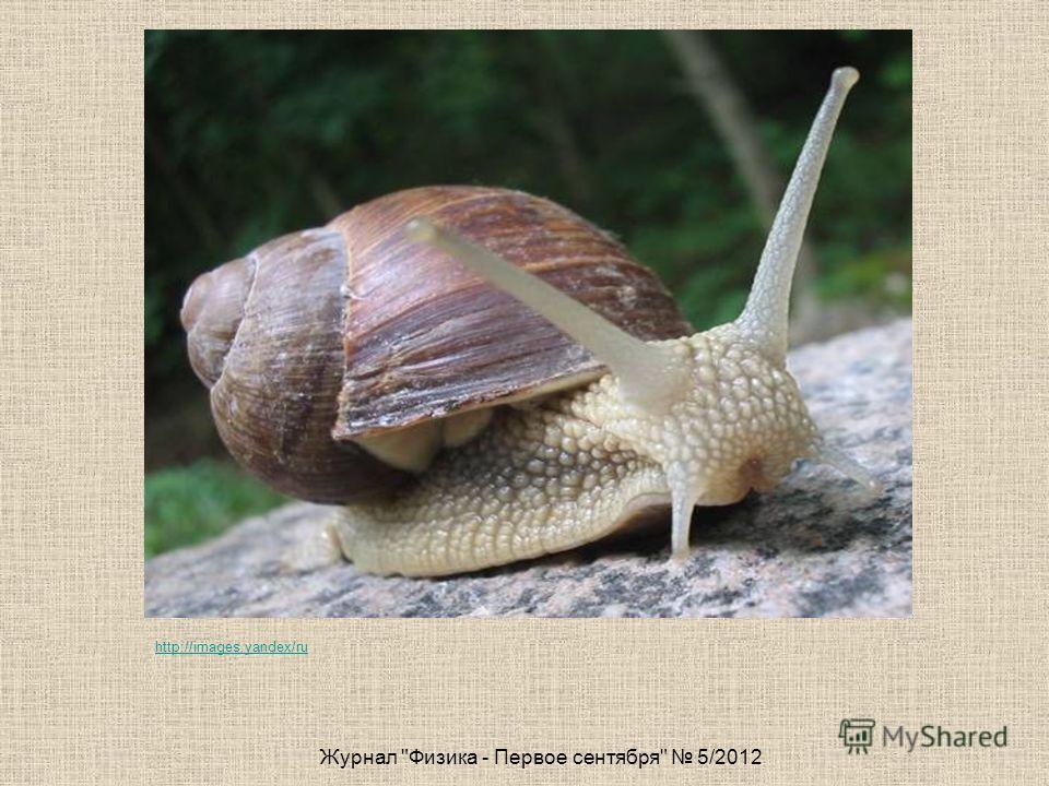 Журнал Физика - Первое сентября 5/2012 http://images.yandex/ru