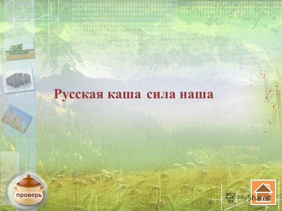 Русская каша сила наша