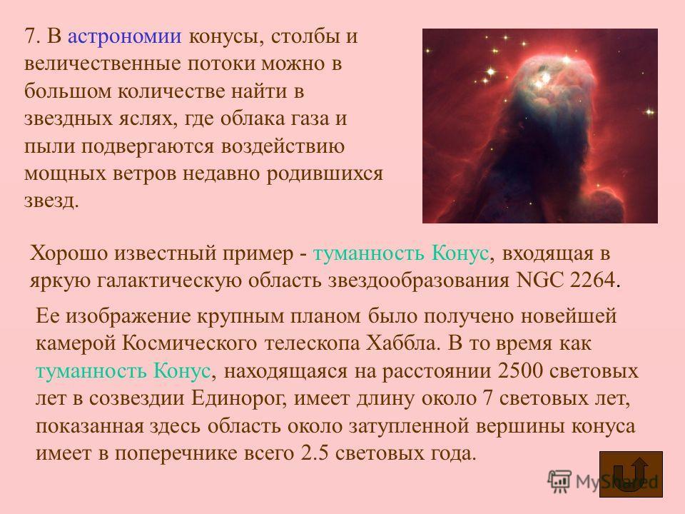 5. «Конусами» называется семейство морских моллюсков подкласса переднежаберных. Раковина коническая (2–16 см), ярко окрашенная. Конусов свыше 500 видов. Живут в тропиках и субтропиках, являются хищниками, имеют ядовитую железу. Укус конусов очень бол