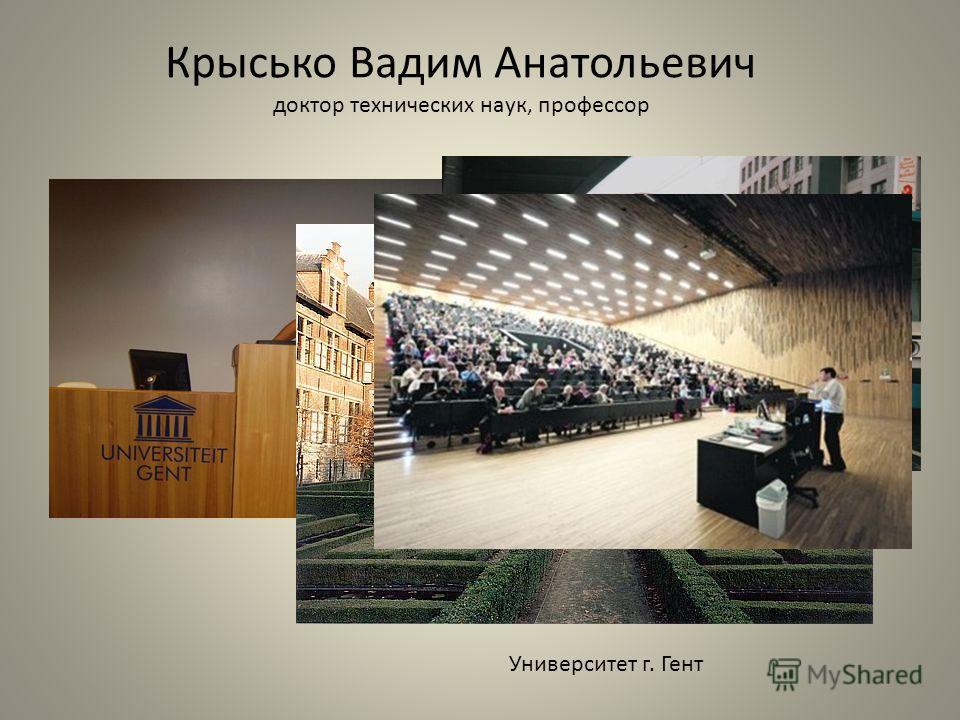 Крысько Вадим Анатольевич доктор технических наук, профессор Университет г. Гент