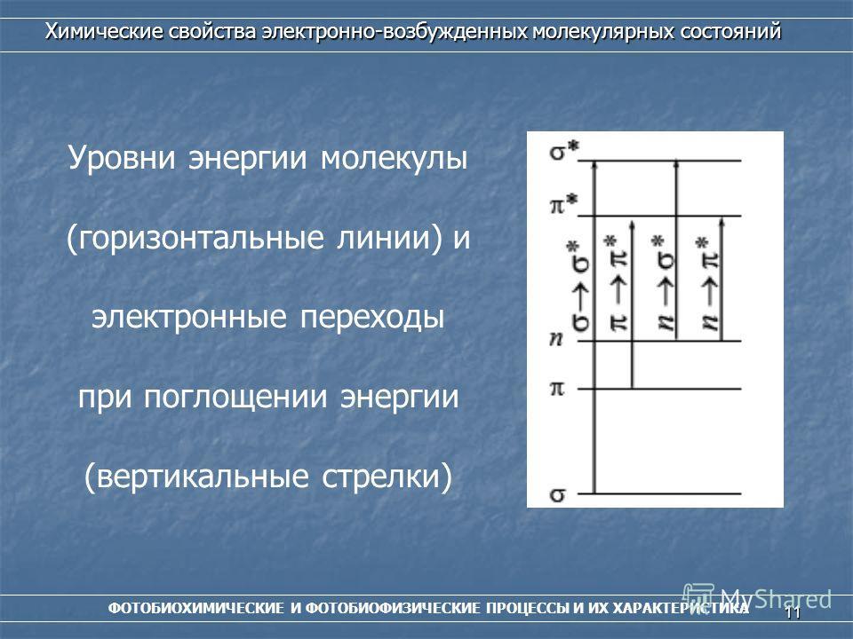 11 ФОТОБИОХИМИЧЕСКИЕ И ФОТОБИОФИЗИЧЕСКИЕ ПРОЦЕССЫ И ИХ ХАРАКТЕРИСТИКА Химические свойства электронно-возбужденных молекулярных состояний Уровни энергии молекулы (горизонтальные линии) и электронные переходы при поглощении энергии (вертикальные стрелк