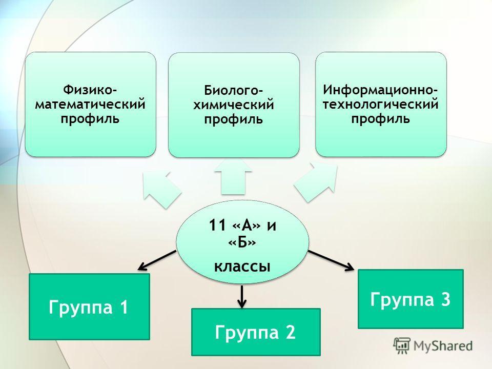 11 «А» и «Б» классы Физико- математический профиль Биолого- химический профиль Информационно- технологический профиль Группа 1 Группа 2 Группа 3