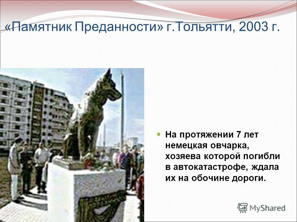 «Памятник Преданности» г.Тольятти, 2003 г. На протяжении 7 лет немецкая овчарка, хозяева которой погибли в автокатастрофе, ждала их на обочине дороги.