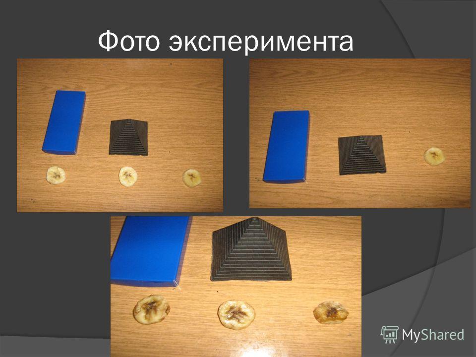 Фото эксперимента