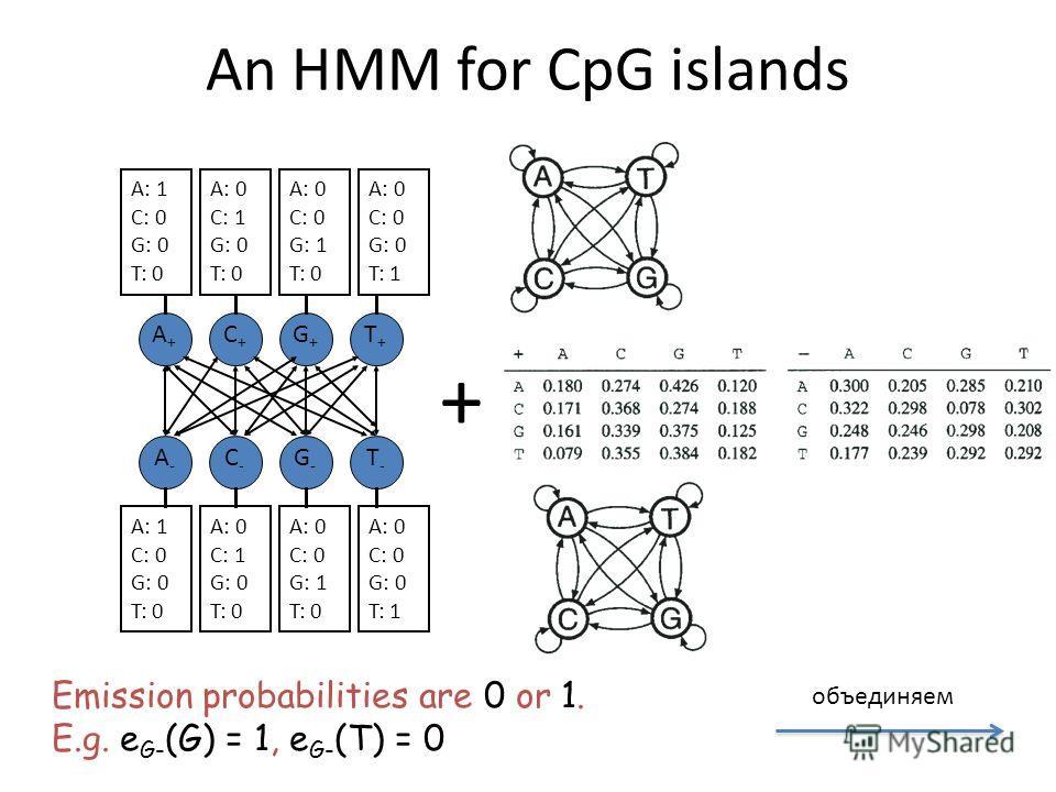 An HMM for CpG islands A+A+ T+T+ G+G+ C+C+ A-A- T-T- G-G- C-C- A: 0 C: 0 G: 1 T: 0 A: 1 C: 0 G: 0 T: 0 A: 0 C: 1 G: 0 T: 0 A: 0 C: 0 G: 0 T: 1 A: 0 C: 0 G: 1 T: 0 A: 1 C: 0 G: 0 T: 0 A: 0 C: 1 G: 0 T: 0 A: 0 C: 0 G: 0 T: 1 Emission probabilities are