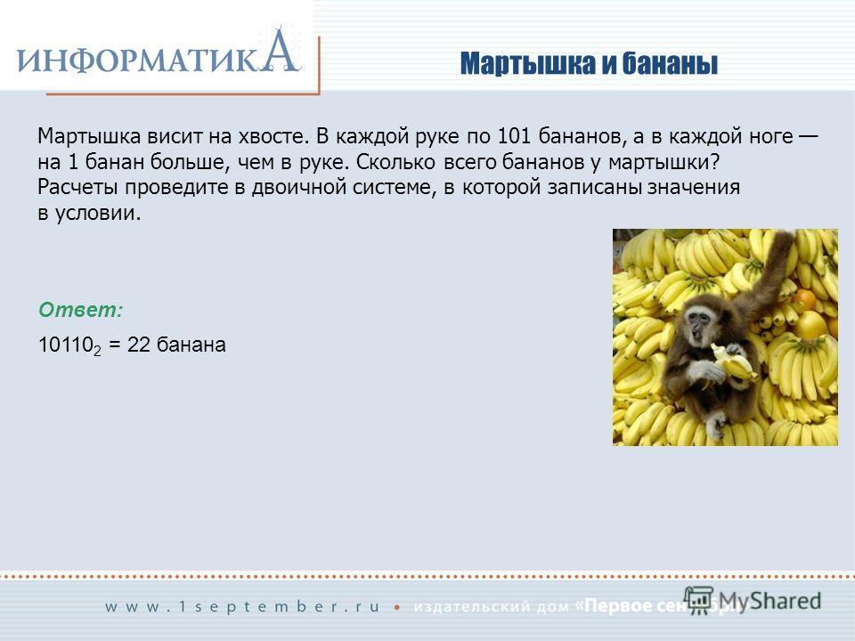 Мартышка и бананы Мартышка висит на хвосте. В каждой руке по 101 бананов, а в каждой ноге на 1 банан больше, чем в руке. Сколько всего бананов у мартышки? Расчеты проведите в двоичной системе, в которой записаны значения в условии. Ответ: 10110 2 = 2