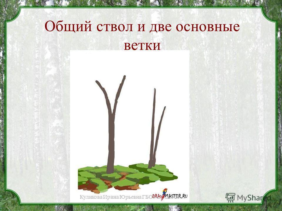 Общий ствол и две основные ветки Куликова Ирина Юрьевна ГБОУ СОШ 929