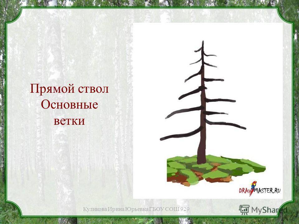 Прямой ствол Основные ветки Куликова Ирина Юрьевна ГБОУ СОШ 929