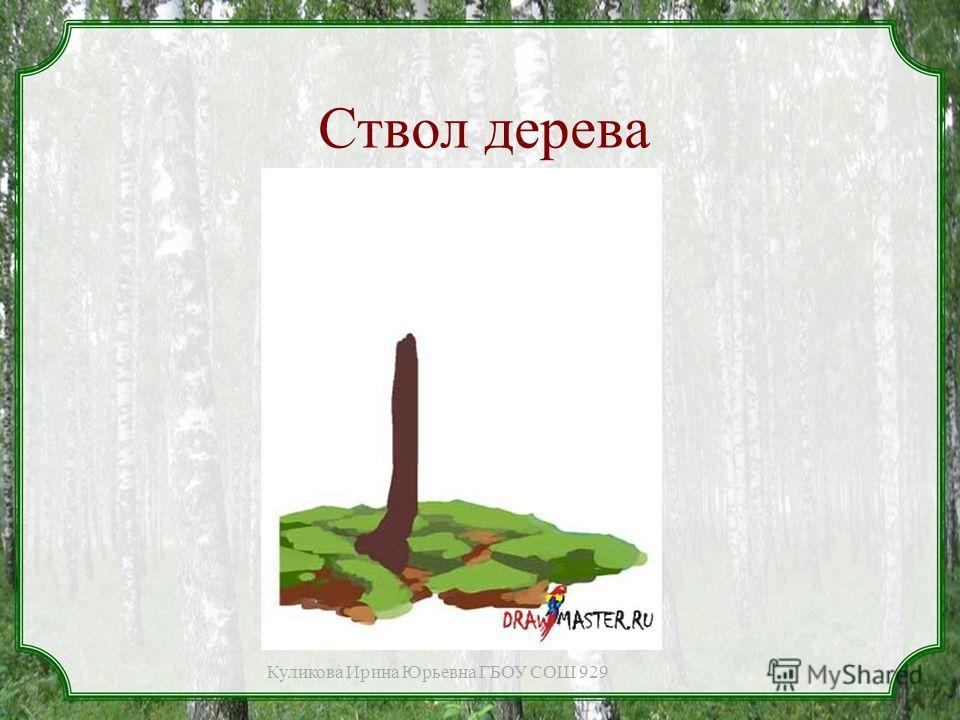 Ствол дерева Куликова Ирина Юрьевна ГБОУ СОШ 929