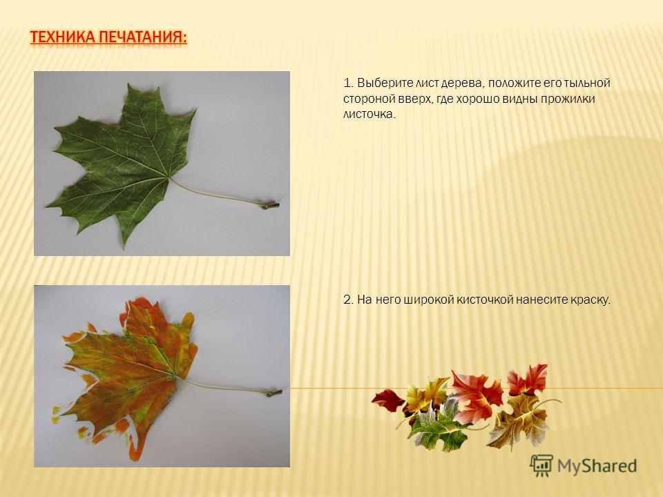 1. Выберите лист дерева, положите его тыльной стороной вверх, где хорошо видны прожилки листочка. 2. На него широкой кисточкой нанесите краску.
