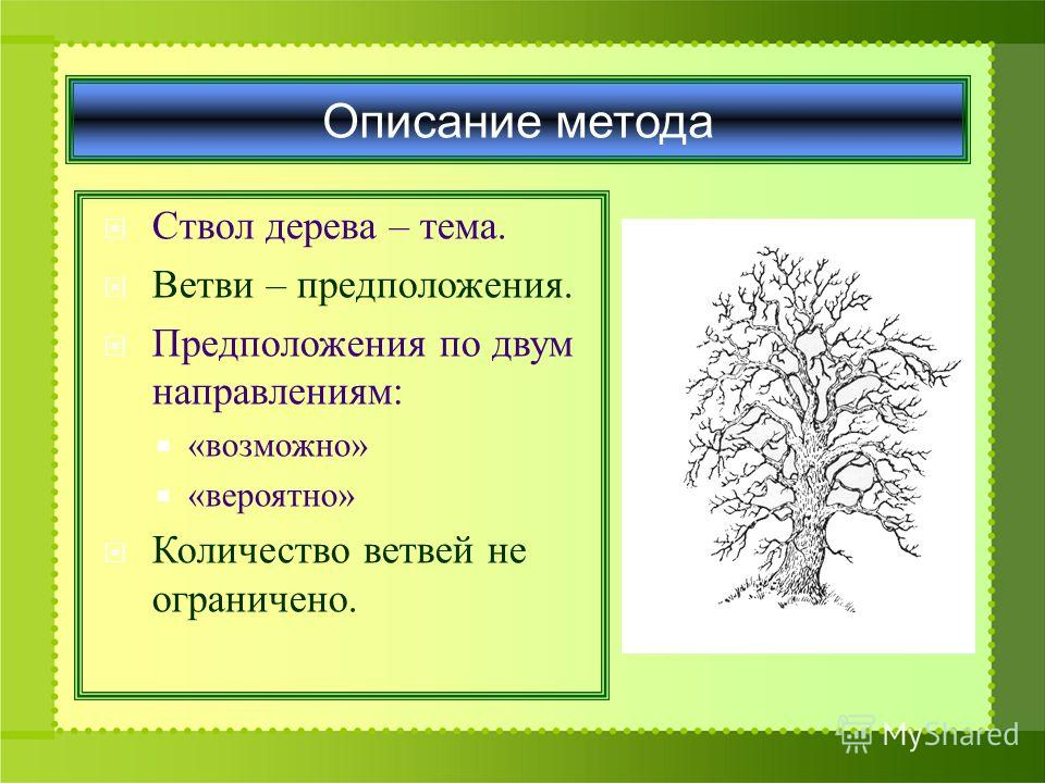 Описание метода Ствол дерева – тема. Ветви – предположения. Предположения по двум направлениям: «возможно» «вероятно» Количество ветвей не ограничено.