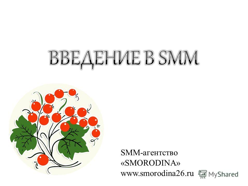 SMM-агентство «SMORODINA» www.smorodina26.ru