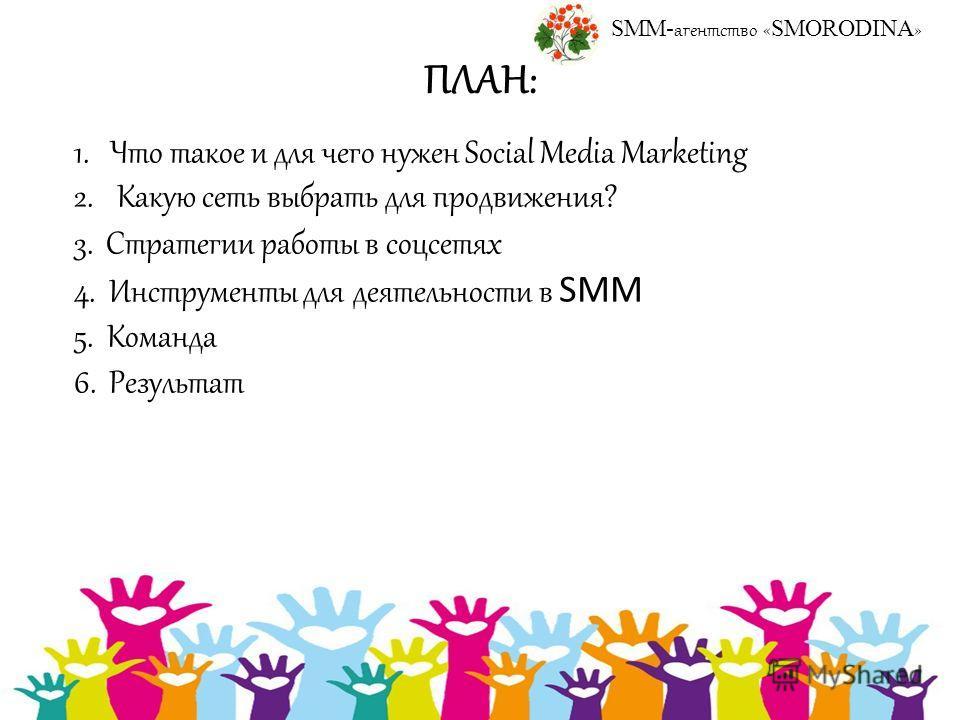 ПЛАН: 1. Что такое и для чего нужен Social Media Marketing 2. Какую сеть выбрать для продвижения? 3. Стратегии работы в соцсетях 4. Инструменты для деятельности в SMM 5. Команда 6. Результат SMM- агентство « SMORODINA »