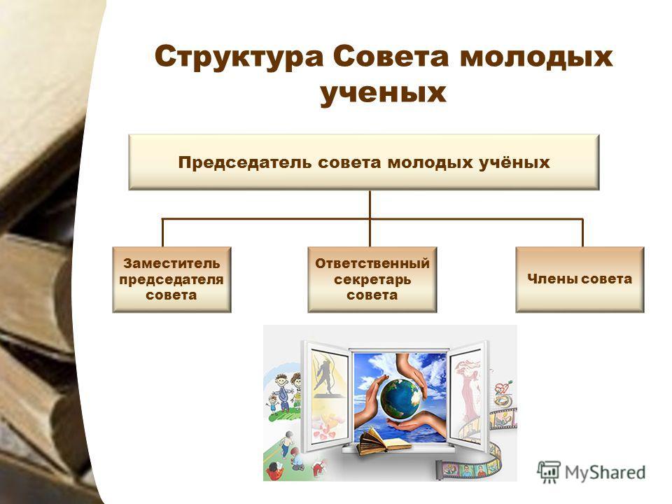 Структура Совета молодых ученых Председатель совета молодых учёных Заместитель председателя совета Члены совета Ответственный секретарь совета