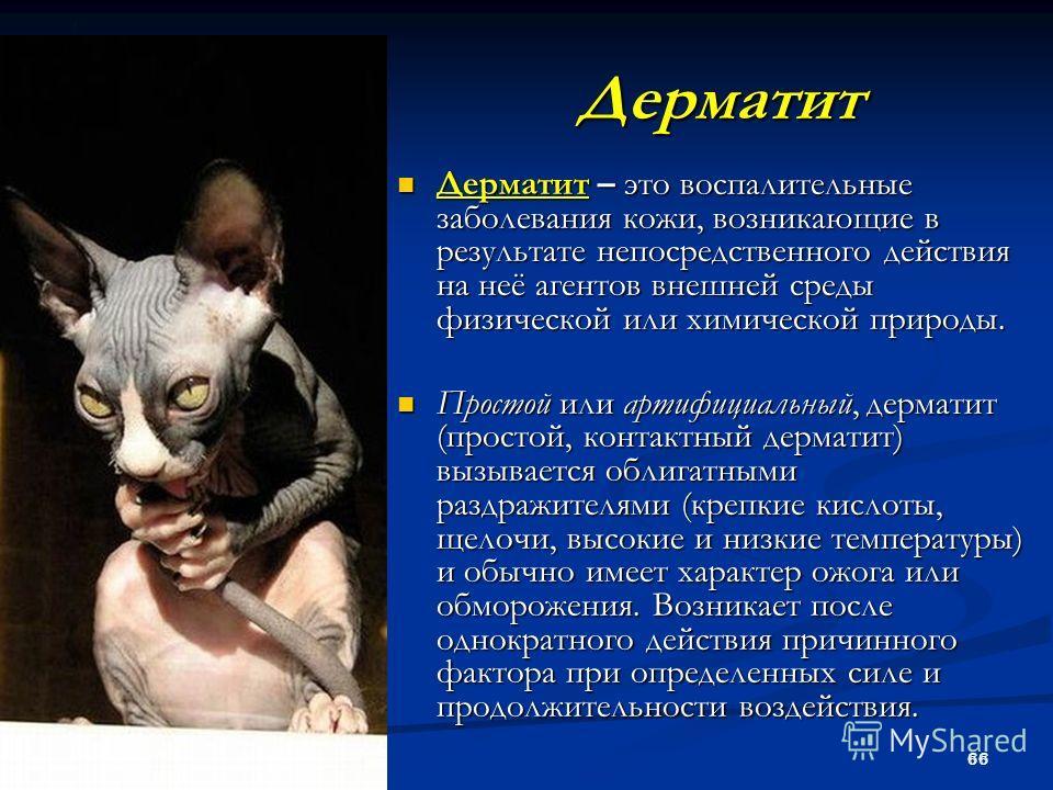 66 Дерматит Дерматит – это воспалительные заболевания кожи, возникающие в результате непосредственного действия на неё агентов внешней среды физической или химической природы. Дерматит – это воспалительные заболевания кожи, возникающие в результате н